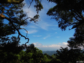 猴山岳步道香草園:猴山岳步道香草園 (18).jpg