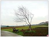 新北大橋&幸福水漾公園:新北大橋&幸福水漾公園 (17).jpg