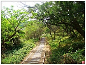 新竹十九公頃青青草原:青青草原 (15).jpg