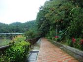 大湖公園白鷺鷥山:大湖公園白鷺鷥山 (17).jpg