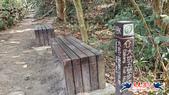 大坑頭嵙山步道(4上3下O形):大坑頭嵙山步道(4上3下O形) (50).jpg
