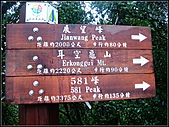 耳空龜山:耳空龜山步道 (6).jpg