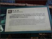 太平山山毛櫸鐵杉林:太平山山毛櫸鐵杉林 (20).jpg