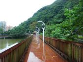 大湖公園白鷺鷥山:大湖公園白鷺鷥山 (18).jpg