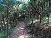 熊空竹坑山:熊空山竹坑山 (67).jpg