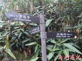 基隆紅淡山步道:基隆紅淡山步道 (11).jpg