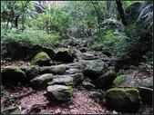 青山瀑布尖山湖紀念碑步道:青山瀑布尖山湖 (21).jpg