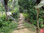 烘爐塞山登山步道:烘爐地塞登山步道 (19).jpg