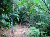 大湖公園白鷺鷥山:大湖公園白鷺鷥山 (20).jpg