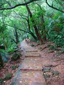 大湖公園白鷺鷥山:大湖公園白鷺鷥山 (21).jpg
