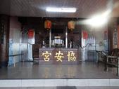 紅淡山櫻花初開:紅淡山 (12).jpg