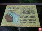 新竹尖石老鷹溪步道·裡埔瀑布:新竹尖石老鷹溪步道·裡埔瀑布 (30).jpg
