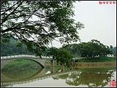 新竹青草湖鳳凰橋:新竹青草湖 (14).jpg