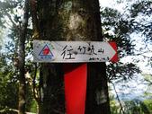 熊空竹坑山:熊空山竹坑山 (76).jpg
