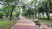 大安森林公園~黃金雨:大安森林公園~黃金雨 (13).jpg