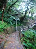 大湖公園白鷺鷥山:大湖公園白鷺鷥山 (22).jpg