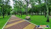 大安森林公園~黃金雨:大安森林公園~黃金雨 (14).jpg