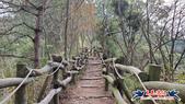 大坑頭嵙山步道(4上3下O形):大坑頭嵙山步道(4上3下O形) (17).jpg