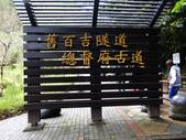 後慈湖秘境:後慈湖秘境 (2).jpg