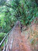 大湖公園白鷺鷥山:大湖公園白鷺鷥山 (23).jpg