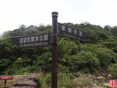 草嶺古道:草嶺古道 (24).jpg