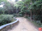 羊稠坑森林步道:羊稠坑森林步道 (3).jpg