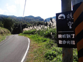 熊空竹坑山:熊空山竹坑山 (18).jpg