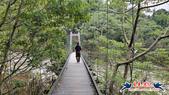 大坑頭嵙山步道(4上3下O形):大坑頭嵙山步道(4上3下O形) (9).jpg
