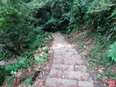 坪頂古圳步道:坪頂古圳步道 (22).jpg