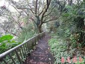 基隆紅淡山步道:基隆紅淡山步道 (20).jpg