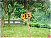新竹青草湖鳳凰橋:新竹青草湖 (17).jpg