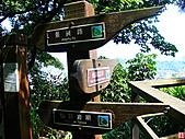 仙跡岩親山步道:仙跡岩步道 (22).jpg