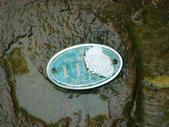 大湖公園白鷺鷥山:大湖公園白鷺鷥山 (26).jpg