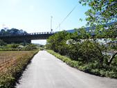 大漢溪水岸蓮座山:大漢溪水岸 (91).jpg