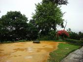 大湖公園白鷺鷥山:大湖公園白鷺鷥山 (27).jpg