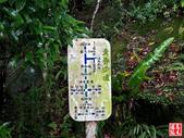 烘爐塞山登山步道:烘爐地塞登山步道 (14).jpg