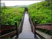 紅樹林步道:紅樹林步道 (20).jpg