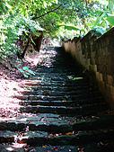 天母古道水管路步道:天母古道水管路 (15).jpg