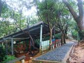 大湖公園白鷺鷥山:大湖公園白鷺鷥山 (28).jpg