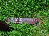 灣潭古道:灣潭古道 (18).jpg
