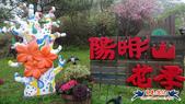 2021陽明山花季-霧裡看花:2021陽明山花季-霧裡看花 (2).jpg