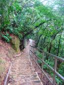 大湖公園白鷺鷥山:大湖公園白鷺鷥山 (29).jpg