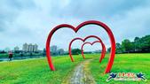 古亭河濱公園·六色香堇菜地毯花海:古亭河濱公園·六色香堇菜地毯花海 (8).jpg
