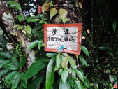 灣潭古道:灣潭古道 (19).jpg