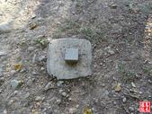 羊稠坑森林步道:羊稠坑森林步道 (16).jpg