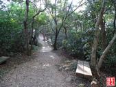 羊稠坑森林步道:羊稠坑森林步道 (21).jpg