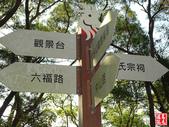 羊稠坑森林步道:羊稠坑森林步道 (12).jpg