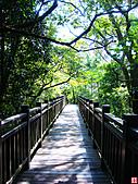 仙跡岩親山步道:仙跡岩步道 (21).jpg