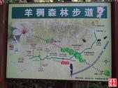 羊稠坑森林步道:羊稠坑森林步道 (20).jpg