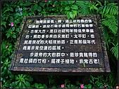 指南宮貓空親山步道:指南宮貓空親山步道 (3).jpg